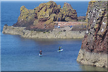 NT6779 : Paddle boarders at Dunbar by Stephen McKay
