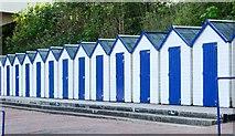 SX9265 : Uniform beach huts, Oddicombe by Chris Denny