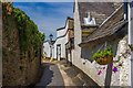 SX8060 : A timeless street - Ramparts Walk Totnes by Chris Denny