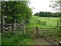 NZ0885 : Public bridleway by Russel Wills