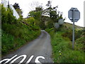 SC4591 : Lane near Ballagilley by Dr Neil Clifton