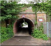 SU3521 : Canal Walk side of a tunnel under Romsey railway station by Jaggery