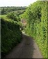 ST5461 : Lane past Manor Farm by Derek Harper