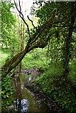 SW9271 : Muddy Footpath by John Myers