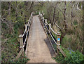 SS7883 : Wales Coast Path boardwalk by the River Kenfig/Afon Cynffig (2) by eswales