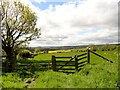 NZ0856 : Field gate on the path to Morrowfield by Robert Graham