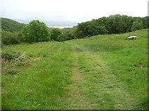 SH5638 : Public footpath descending to Tyddyn Llwyn by Christine Johnstone