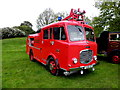 H3682 : Dennis Fire Truck, Baronscourt by Kenneth  Allen
