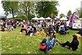 SP4415 : Enjoying the Food Festival at Blenheim Palace by Steve Daniels