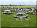 NX4453 : Picnic tables at the Crook of Baldoon RSPB reserve by Oliver Dixon
