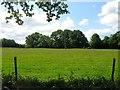 TQ3427 : Matthew's Field by Simon Carey