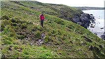 SH2035 : Boggy patch on the Wales Coast Path on Lleyn by Jeremy Bolwell