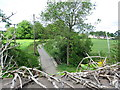 SK3706 : View towards Shackerstone by Keith Williams