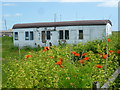TQ9419 : Poppies and old railway carriage by Marathon
