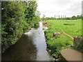 ST0611 : River  Culm  and  grazing  cattle by Martin Dawes
