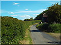 TQ5199 : Berwick Lane, near Stanford Rivers by Malc McDonald