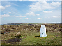 SE0030 : Trig point at summit area of High Brown Knoll by Trevor Littlewood