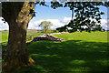 NY6166 : Birdoswald Roman Fort by Ian Taylor