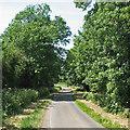 TL5144 : Down Park Road by John Sutton