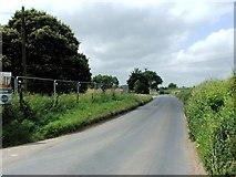 TR2955 : Hammill Road, near Woodnesborough by Chris Whippet