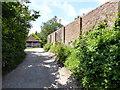 TQ3215 : Boddington's Lane, Ditchling by PAUL FARMER