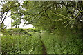 SJ8047 : Silverdale: footpath off Scot Hay Road by Jonathan Hutchins