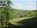SE8452 : Millington  Dale  from  the  edge  of  Rabbit  Warren  Wood by Martin Dawes