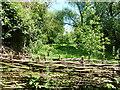 TF1807 : Willow hurdles by Bob Harvey