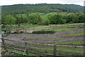 SK2376 : Fields for horses near Grindleford by Bill Boaden