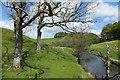NS6626 : River Ayr Way by Richard Webb
