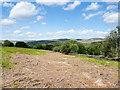 SK2379 : Bracken on moorland near to Leam Farm by Trevor Littlewood