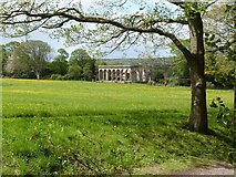 NZ1758 : Ruins of the old orangery, Gibside Hall, Gateshead by Derek Voller