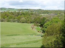 NZ1758 : View North-west from a window in the old orangery, Gibside Hall by Derek Voller