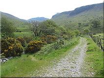 NY1807 : Footpath towards Scafell Pike beside Lingmell Gill by Gareth James
