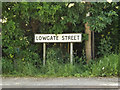 TM1473 : Lowgate Street sign by Adrian Cable