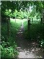 SP9513 : Path to Grim's Ditch by Philip Jeffrey