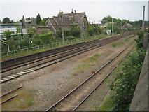 TG2407 : Trowse railway station (site), Norfolk by Nigel Thompson