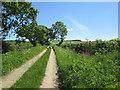 SE7664 : Hanging  Hill  Lane  (track) by Martin Dawes