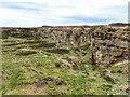 NZ0941 : Huts Quarry by Mick Garratt