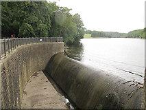 SE3337 : Waterloo Lake - overflow (2) by Stephen Craven