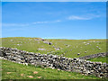 NY7224 : Dry stone wall below Peeping Hill by Trevor Littlewood