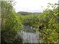 NM8601 : The Edge Of Lochan Ceann a' Choin by Rude Health