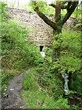 SH6541 : Stream entering Coed Llyn Mair by Christine Johnstone