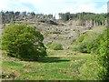 SH6441 : Felled hillside, west of Creuau by Christine Johnstone