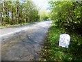 SW7122 : Helston 5 Miles Milestone by Rude Health