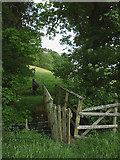 NY6715 : Footbridge over Scale Beck by Karl and Ali