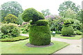 SD4616 : Topiary at Rufford Old Hall by Graham Hogg