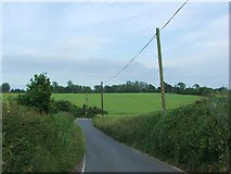 TR2647 : Coldred Road, near Coldred by Chris Whippet