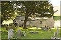 SO1953 : Yew Tree at St David by Bill Nicholls