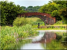 SD7908 : Manchester, Bolton and Bury Canal, Rothwell Bridge by David Dixon